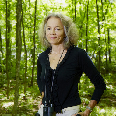 Cindy Bongard